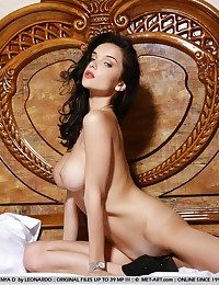 Prex beauty with curvaceous body, adult movie star attractiveness with an increment of super-vixen poses.