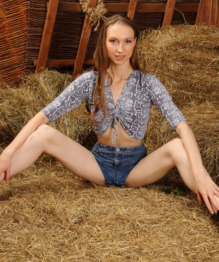 Doodah smoothly-shaven main in a barn